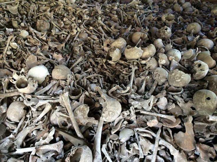 bone-664596_1920-PileOfHumanSkeletalRemains-pixabay-cc0-pubdom