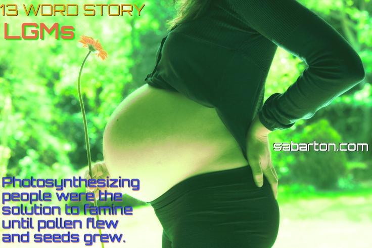 13-word-story-LGMs-pregnant-woman-1130612_1920-pixabay-cc0-pubdom