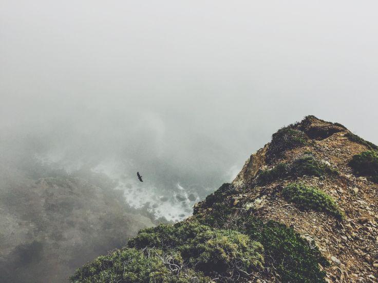 Mountains-eagle-pixabay-cc0-pubdom.jpg