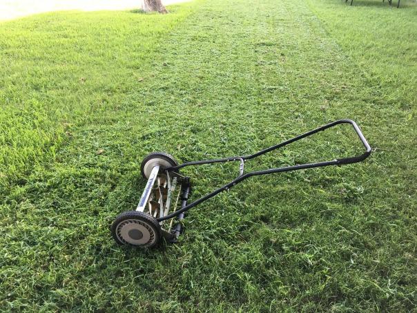 lawn-1812944_1920-pushmower-pixabay-cc0-pubdom.jpg